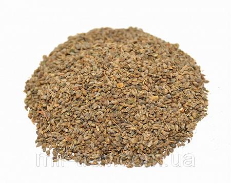 где можно купить семена петрушки